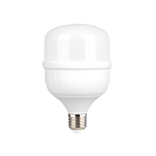 Galponera Led 30W